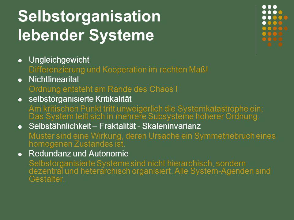 Selbstorganisation lebender Systeme Ungleichgewicht Differenzierung und Kooperation im rechten Maß! Nichtlinearität Ordnung entsteht am Rande des Chao