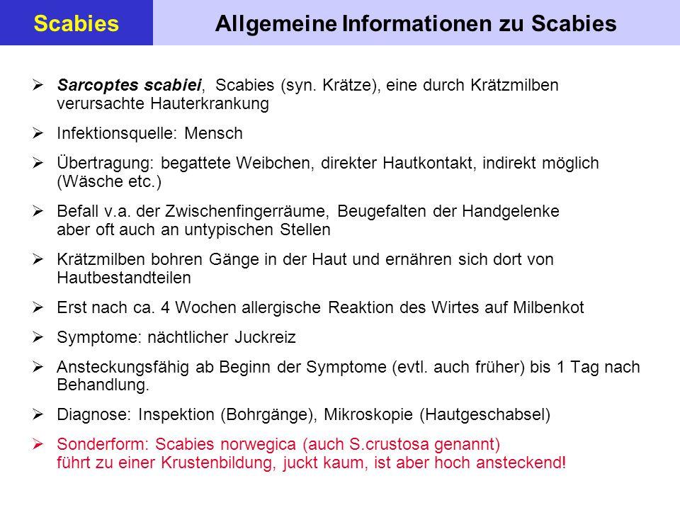 Allgemeine Informationen zu ScabiesScabies  Sarcoptes scabiei, Scabies (syn. Krätze), eine durch Krätzmilben verursachte Hauterkrankung  Infektionsq