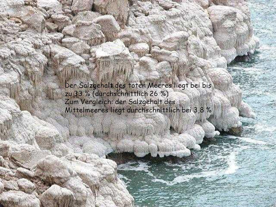 Der Salzgehalt des toten Meeres liegt bei bis zu 33 % (durchschnittlich 26 %) Zum Vergleich: der Salzgehalt des Mittelmeeres liegt durchschnittlich bei 3,8 %