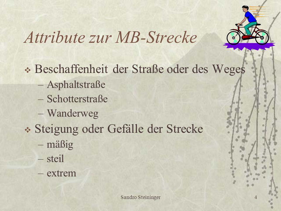 Sandro Steininger4 Attribute zur MB-Strecke  Beschaffenheit der Straße oder des Weges –Asphaltstraße –Schotterstraße –Wanderweg  Steigung oder Gefälle der Strecke –mäßig –steil –extrem