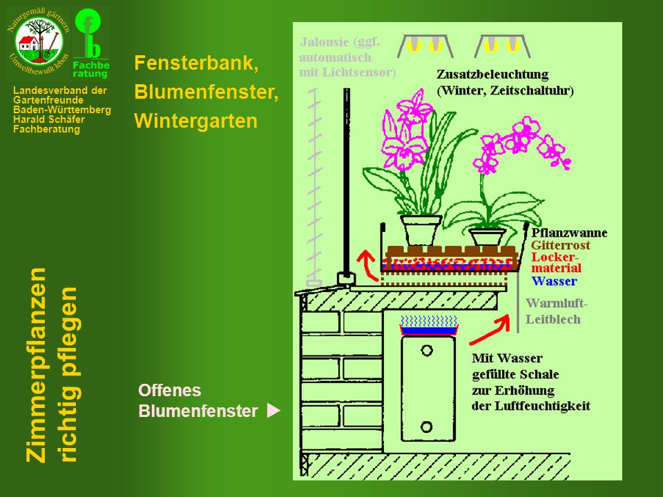 Fensterbank, Blumenfenster, Wintergarten Offenes Blumenfenster  Zimmerpflanzen richtig pflegen Landesverband der Gartenfreunde Baden-Württemberg Harald Schäfer Fachberatung