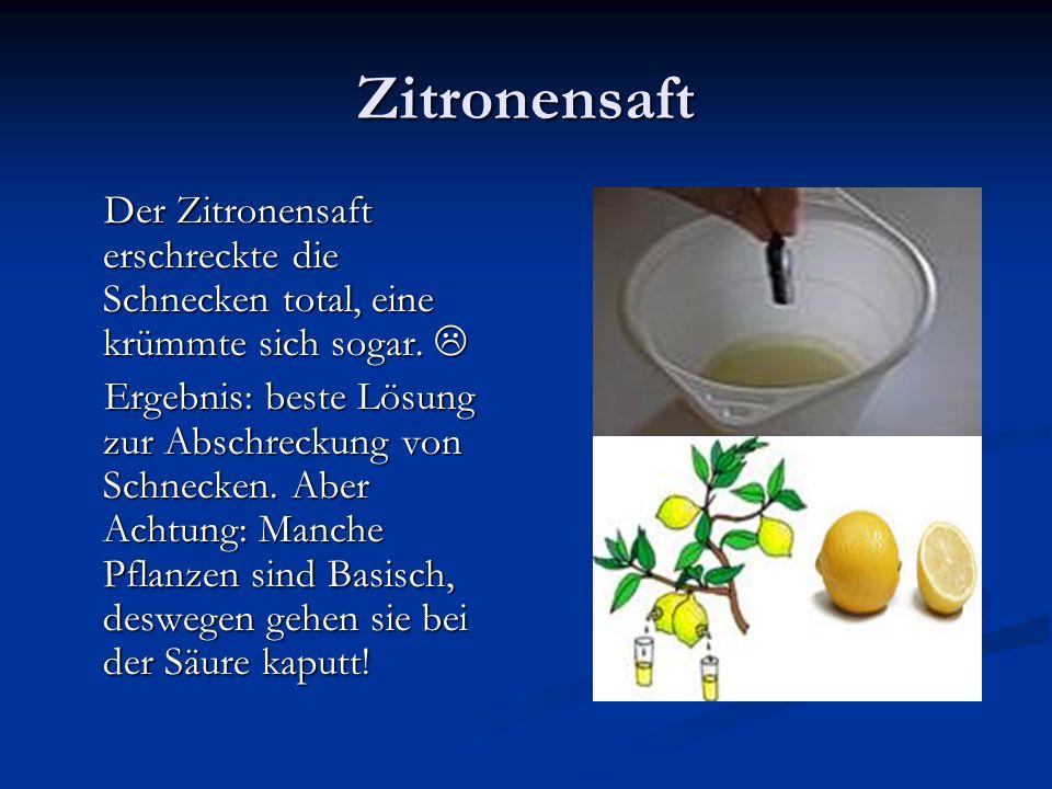 Und Zitronenschale… Bei dem Versuch mit der Zitronenschale, war es eindeutig, dass es nicht hilft.