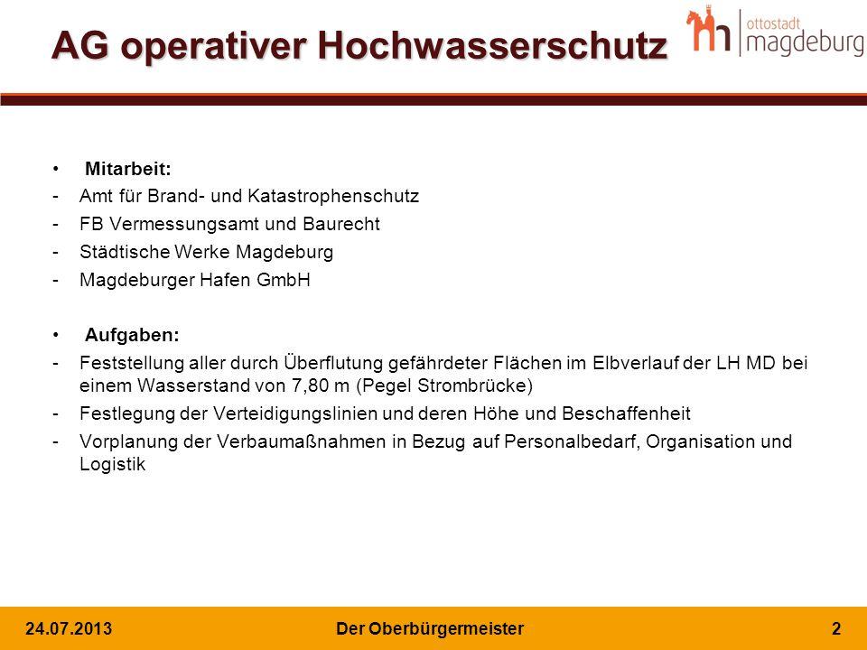 AG operativer Hochwasserschutz Mitarbeit: -Amt für Brand- und Katastrophenschutz -FB Vermessungsamt und Baurecht -Städtische Werke Magdeburg -Magdebur