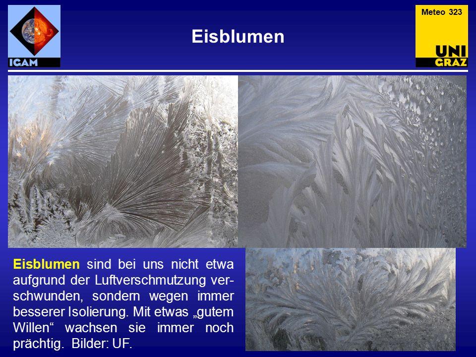 """Eisblumen Eisblumen sind bei uns nicht etwa aufgrund der Luftverschmutzung ver- schwunden, sondern wegen immer besserer Isolierung. Mit etwas """"gutem W"""