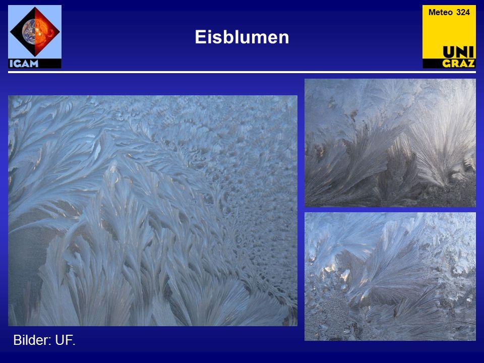 Eisblumen Bilder: UF. Meteo 324