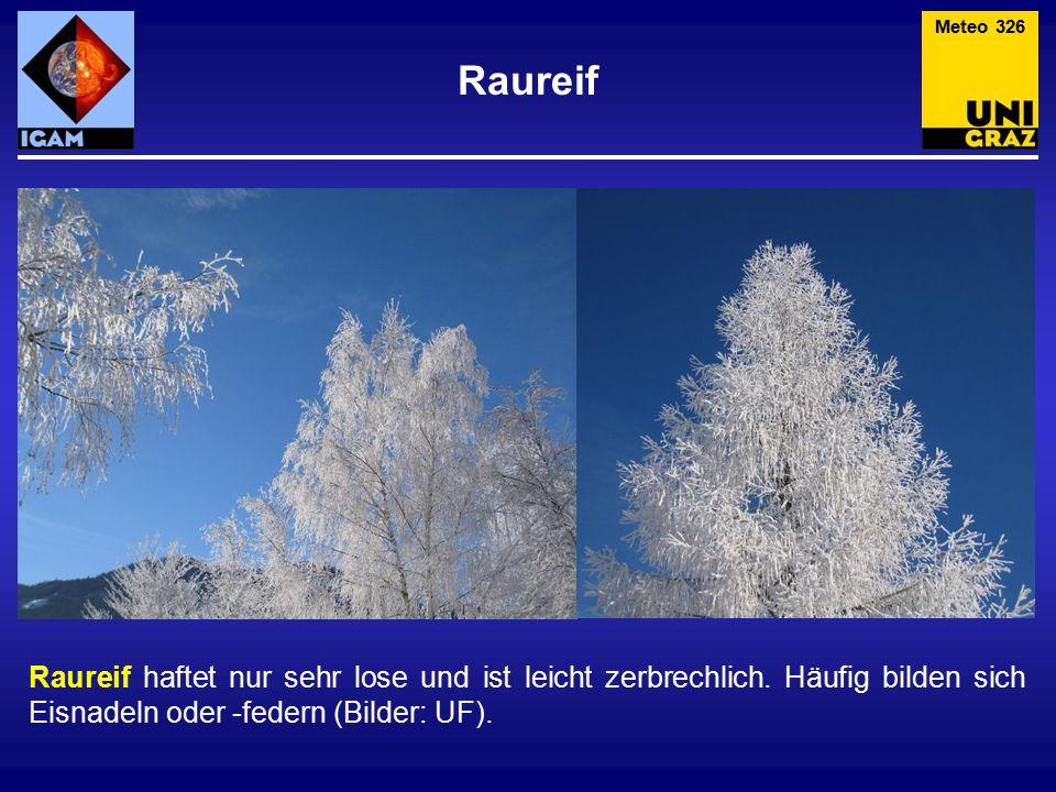 Raureif Meteo 326 Raureif haftet nur sehr lose und ist leicht zerbrechlich. Häufig bilden sich Eisnadeln oder -federn (Bilder: UF).