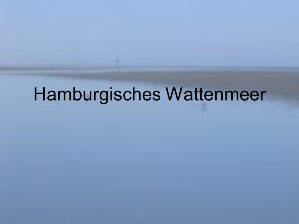 Hamburgisches Wattenmeer