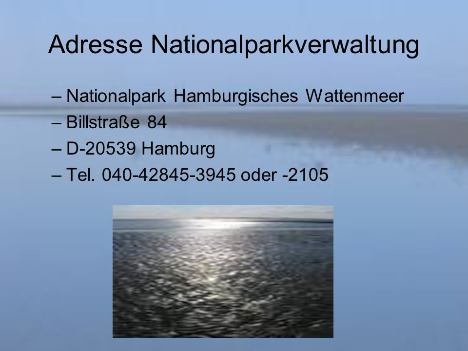 Adresse Nationalparkverwaltung –Nationalpark Hamburgisches Wattenmeer –Billstraße 84 –D-20539 Hamburg –Tel.
