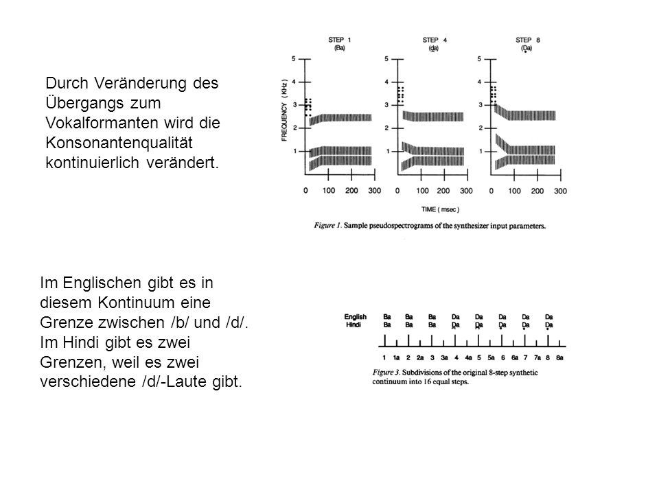 Durch Veränderung des Übergangs zum Vokalformanten wird die Konsonantenqualität kontinuierlich verändert.