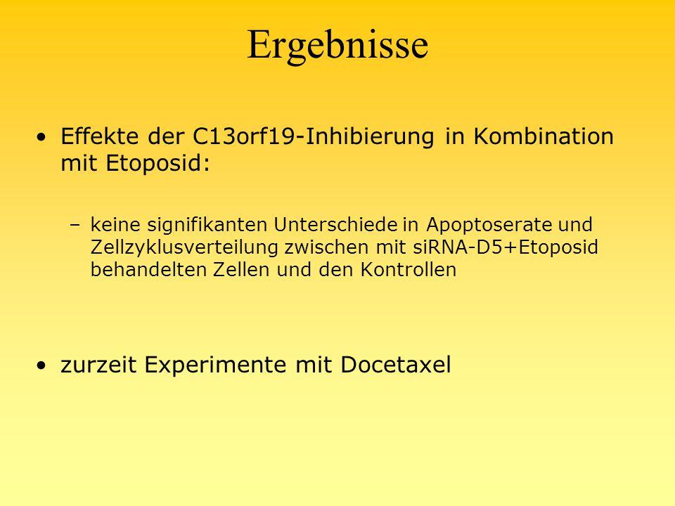 Ergebnisse Effekte der C13orf19-Inhibierung in Kombination mit Etoposid: –keine signifikanten Unterschiede in Apoptoserate und Zellzyklusverteilung zwischen mit siRNA-D5+Etoposid behandelten Zellen und den Kontrollen zurzeit Experimente mit Docetaxel
