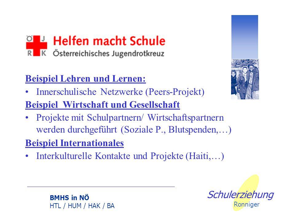 BMHS in NÖ HTL / HUM / HAK / BA Schulerziehung Ronniger Beispiel Handlungsfeld Leitung und Qualitätsmanagement Evaluation : Erhebungsraster / Befragun