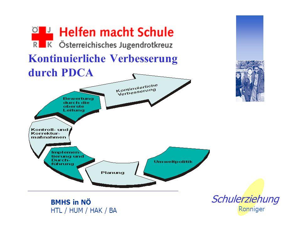 BMHS in NÖ HTL / HUM / HAK / BA Schulerziehung Ronniger Beispiel Lehren und Lernen: Innerschulische Netzwerke (Peers-Projekt) Beispiel Wirtschaft und