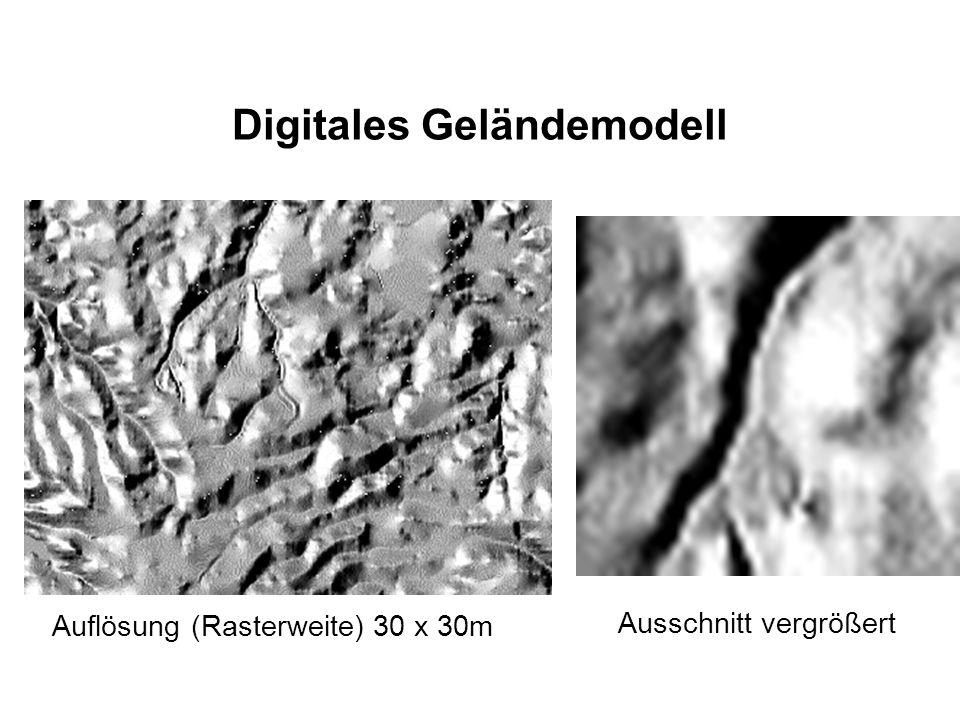 Digitales Geländemodell Ausschnitt vergrößert Auflösung (Rasterweite) 30 x 30m