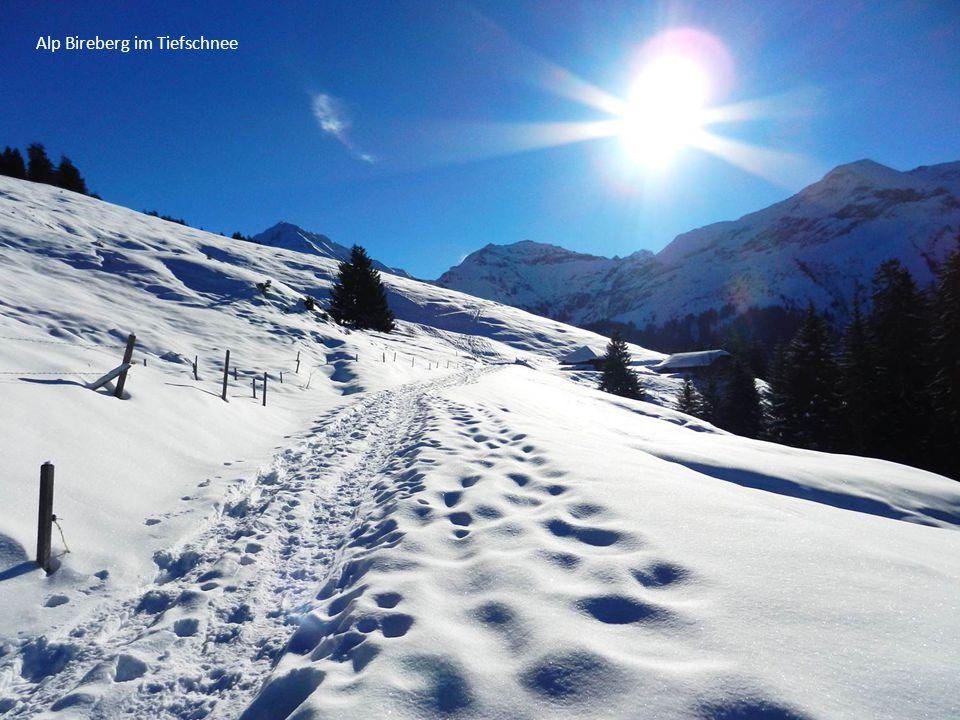 Alp Bireberg im Tiefschnee