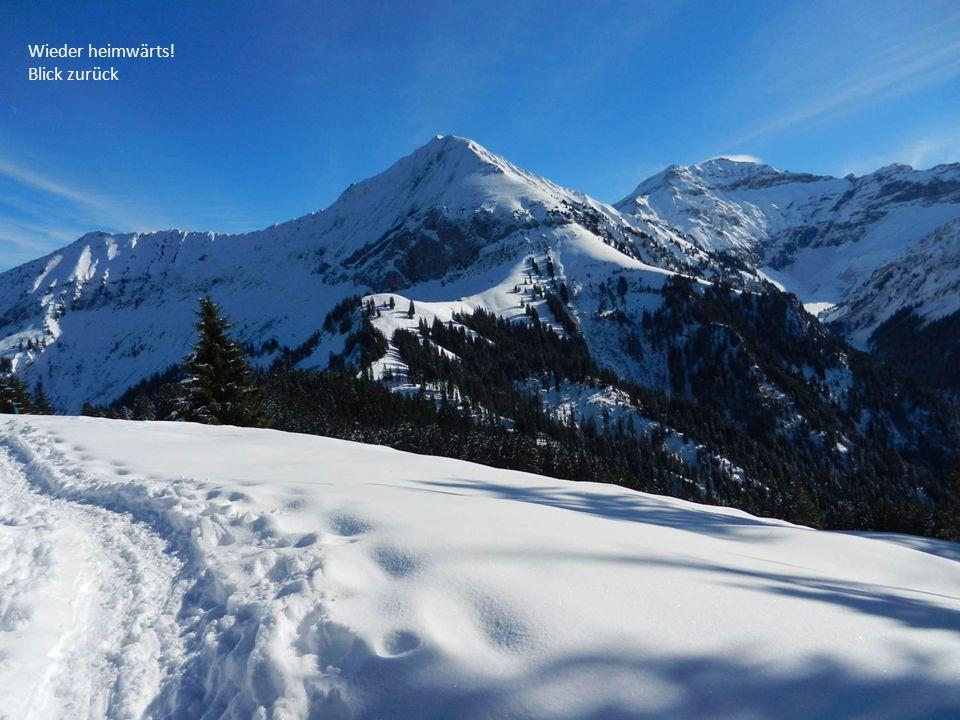 Eine Schneeschuh-Tour mit gigantischer Aussicht auf alle Seiten