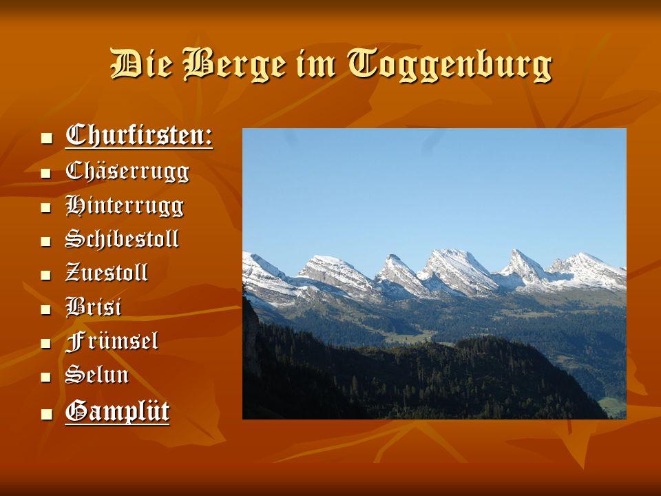 Die Berge im Toggenburg Churfirsten: Churfirsten: Chäserrugg Chäserrugg Hinterrugg Hinterrugg Schibestoll Schibestoll Zuestoll Zuestoll Brisi Brisi Fr