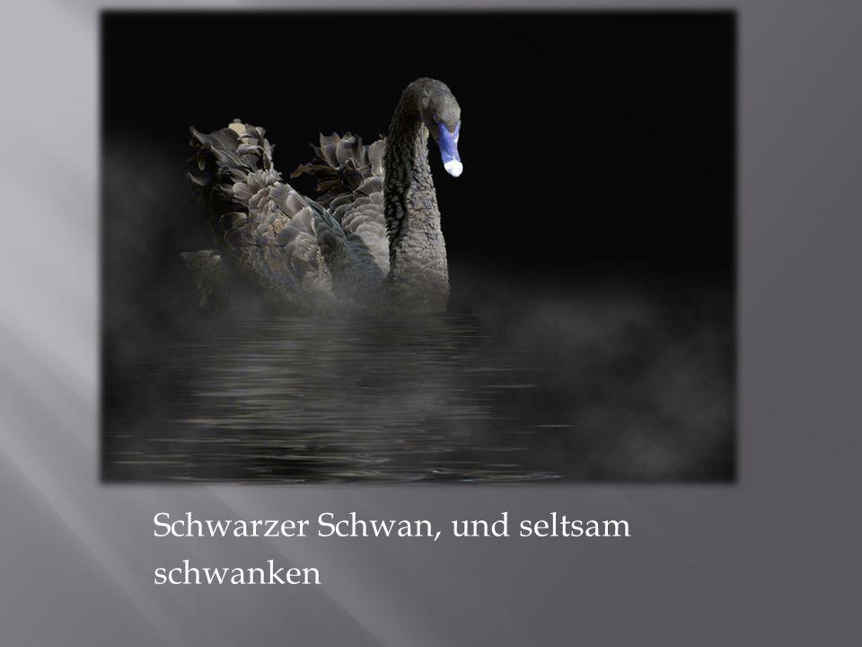 Schwarzer Schwan, und seltsam schwanken