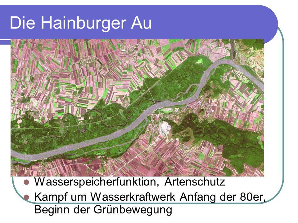 Die Hainburger Au Wasserspeicherfunktion, Artenschutz Kampf um Wasserkraftwerk Anfang der 80er, Beginn der Grünbewegung