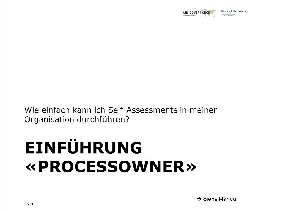 Folie EINFÜHRUNG «PROCESSOWNER» Wie einfach kann ich Self-Assessments in meiner Organisation durchführen.