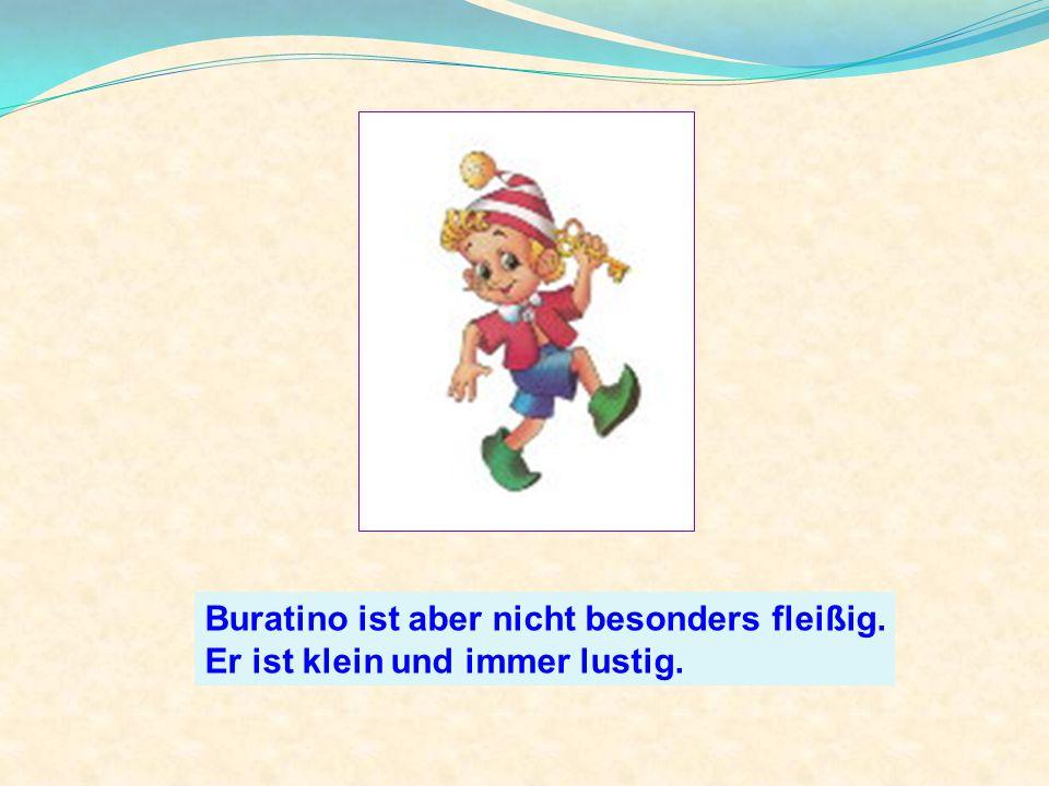 Buratino ist aber nicht besonders fleißig. Er ist klein und immer lustig.