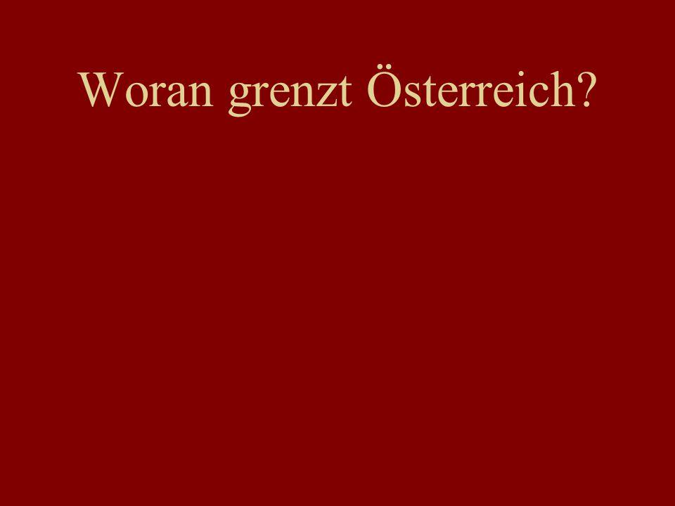Hundertwasser Haus Der Naschmarkt Der Flohmarkt Die Donauinsel neue Assoziationen