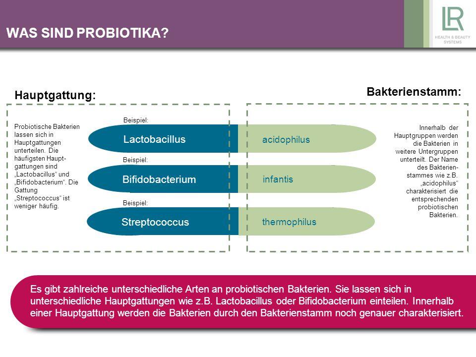 WAS SIND PROBIOTIKA? Lactobacillus Bifidobacterium Streptococcus acidophilus infantis thermophilus Probiotische Bakterien lassen sich in Hauptgattunge
