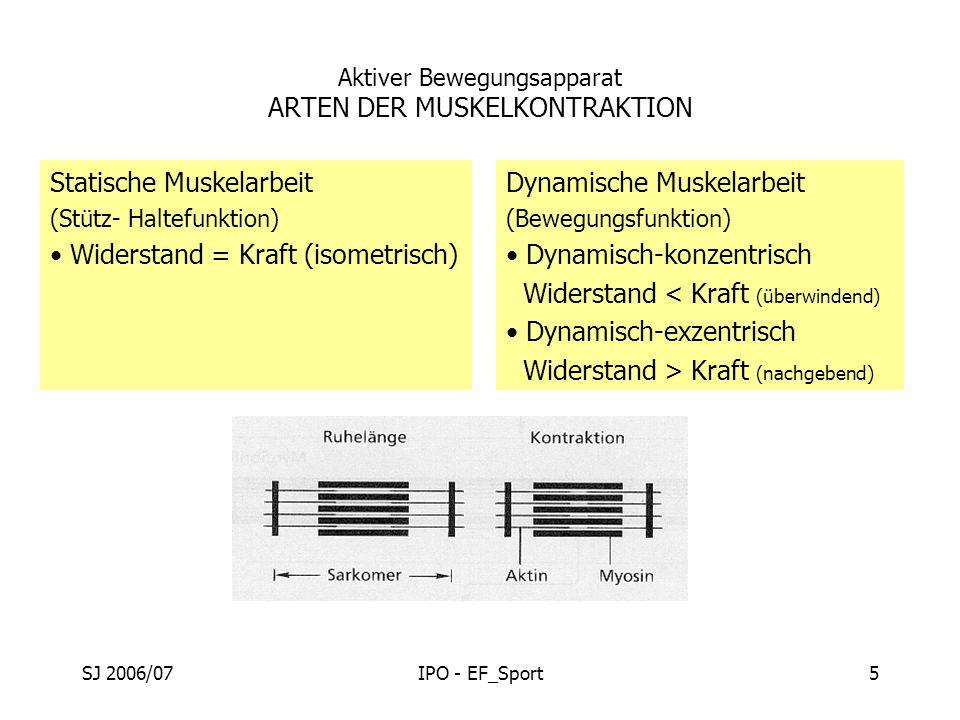 SJ 2006/07IPO - EF_Sport5 Aktiver Bewegungsapparat ARTEN DER MUSKELKONTRAKTION Statische Muskelarbeit (Stütz- Haltefunktion) Widerstand = Kraft (isome