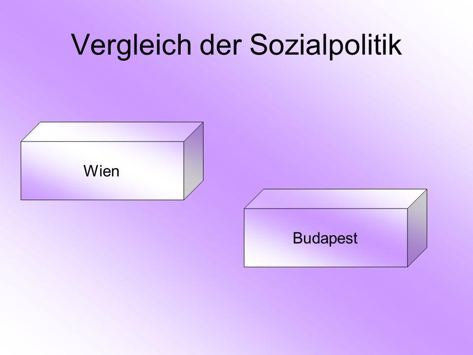 Vergleich der Sozialpolitik Wien Budapest
