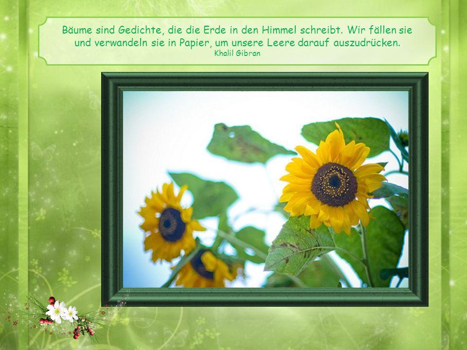 Ein Freund ist ein Geschenk, das man sich selber macht. Robert Louis Stevenson