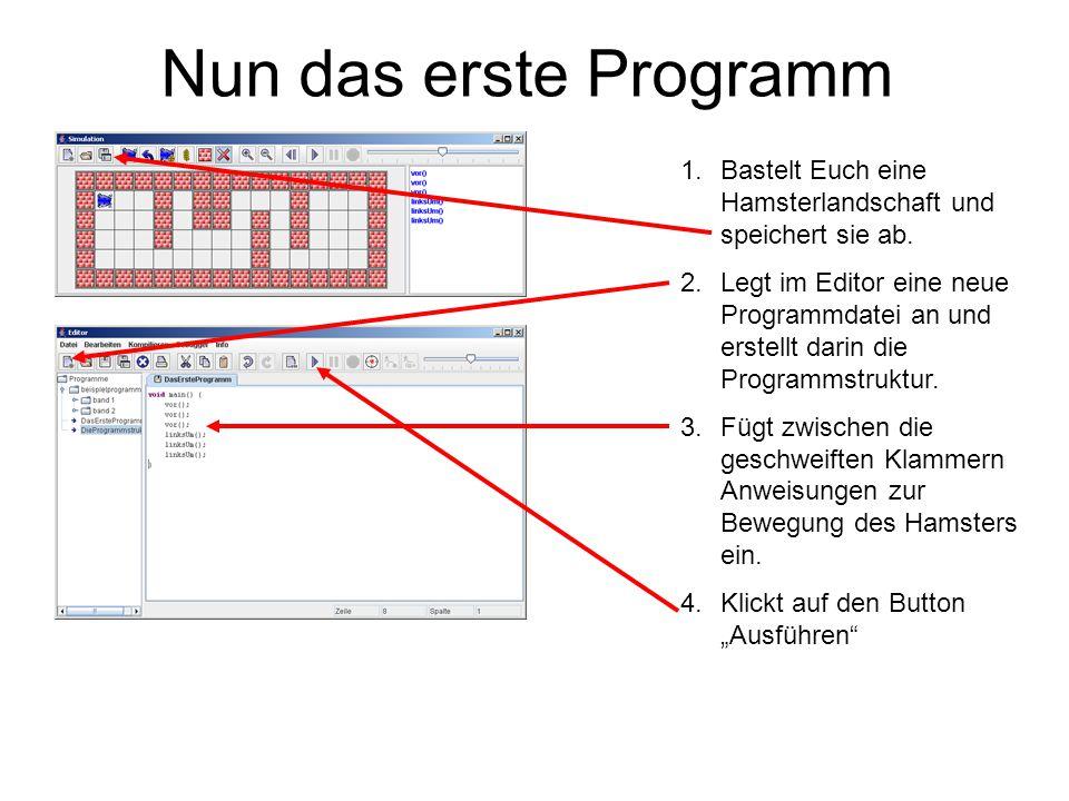 Nun das erste Programm 1.Bastelt Euch eine Hamsterlandschaft und speichert sie ab. 2.Legt im Editor eine neue Programmdatei an und erstellt darin die