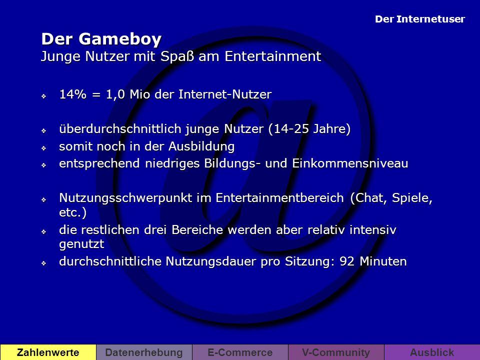 @ Der Internetuser ZahlenwerteDatenerhebungE-CommerceV-CommunityAusblick Der Gameboy Junge Nutzer mit Spaß am Entertainment  14% = 1,0 Mio der Intern