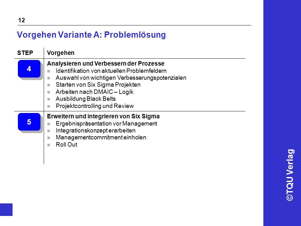©TQU Verlag 12 Vorgehen Variante A: Problemlösung STEPVorgehen Analysieren und Verbessern der Prozesse n Identifikation von aktuellen Problemfeldern n