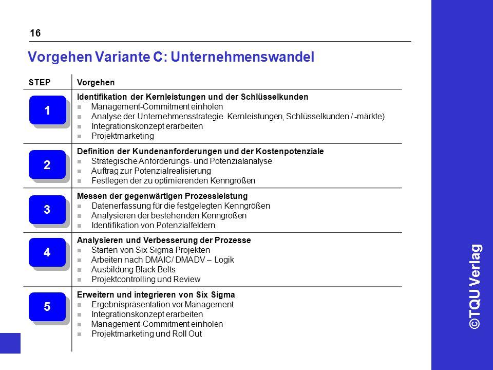 ©TQU Verlag 16 Vorgehen Variante C: Unternehmenswandel STEPVorgehen Identifikation der Kernleistungen und der Schlüsselkunden n Management-Commitment