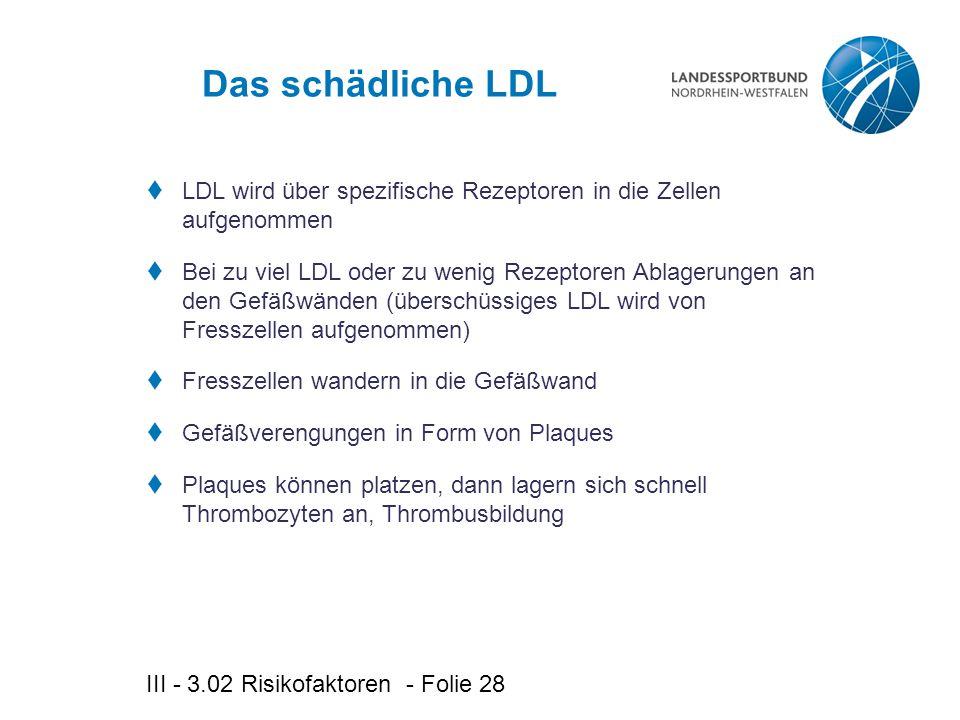 III - 3.02 Risikofaktoren - Folie 28 Das schädliche LDL  LDL wird über spezifische Rezeptoren in die Zellen aufgenommen  Bei zu viel LDL oder zu wenig Rezeptoren Ablagerungen an den Gefäßwänden (überschüssiges LDL wird von Fresszellen aufgenommen)  Fresszellen wandern in die Gefäßwand  Gefäßverengungen in Form von Plaques  Plaques können platzen, dann lagern sich schnell Thrombozyten an, Thrombusbildung