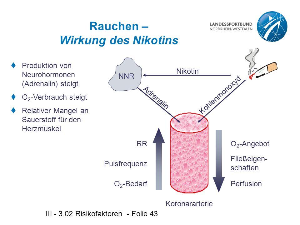 III - 3.02 Risikofaktoren - Folie 43 Rauchen – Wirkung des Nikotins  Produktion von Neurohormonen (Adrenalin) steigt  O 2 -Verbrauch steigt  Relativer Mangel an Sauerstoff für den Herzmuskel Koronararterie Kohlenmonoxyd Nikotin NNR Adrenalin O 2 -Bedarf Pulsfrequenz RR Perfusion Fließeigen- schaften O 2 -Angebot
