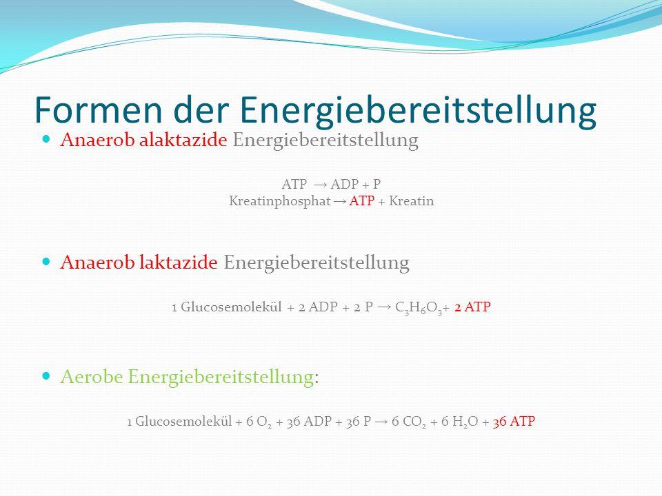 Formen der Energiebereitstellung Anaerob alaktazide Energiebereitstellung ATP → ADP + P Kreatinphosphat → ATP + Kreatin Anaerob laktazide Energieberei