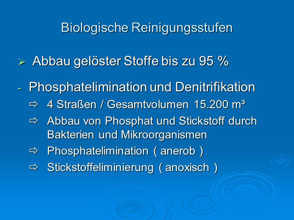 Biologische Reinigungsstufen  Abbau gelöster Stoffe bis zu 95 % - Phosphatelimination und Denitrifikation  4 Straßen / Gesamtvolumen 15.200 m³  Abbau von Phosphat und Stickstoff durch Bakterien und Mikroorganismen  Phosphatelimination ( anerob )  Stickstoffeliminierung ( anoxisch )