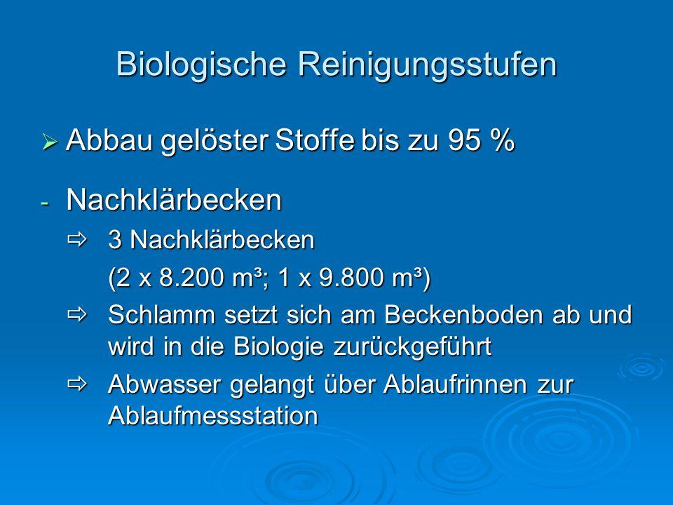 Biologische Reinigungsstufen  Abbau gelöster Stoffe bis zu 95 % - Nachklärbecken  3 Nachklärbecken (2 x 8.200 m³; 1 x 9.800 m³)  Schlamm setzt sich am Beckenboden ab und wird in die Biologie zurückgeführt  Abwasser gelangt über Ablaufrinnen zur Ablaufmessstation
