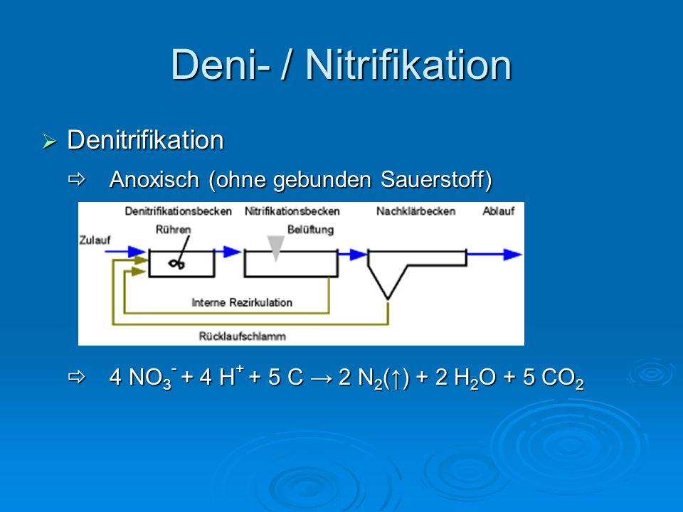 Deni- / Nitrifikation  Denitrifikation  Anoxisch (ohne gebunden Sauerstoff)  4 NO 3 - + 4 H + + 5 C → 2 N 2 (↑) + 2 H 2 O + 5 CO 2