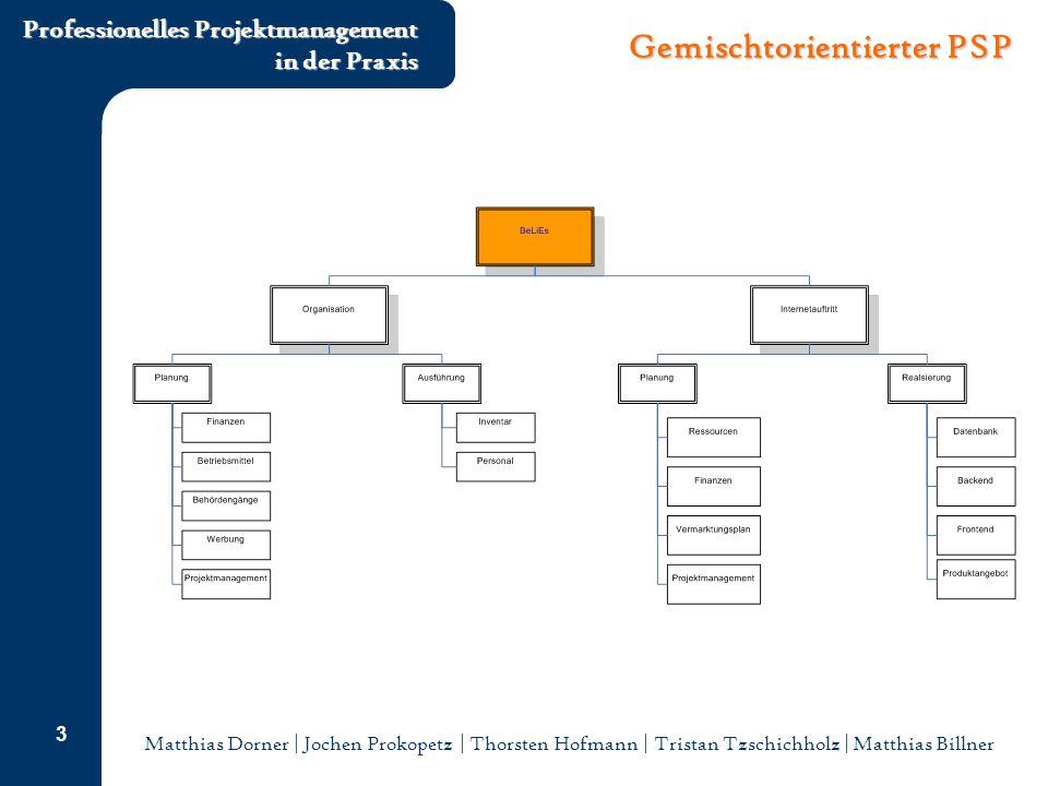 Matthias Dorner | Jochen Prokopetz | Thorsten Hofmann | Tristan Tzschichholz | Matthias Billner Professionelles Projektmanagement in der Praxis 3 Gemischtorientierter PSP