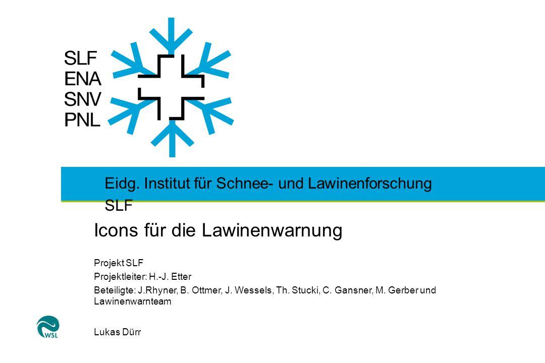 Eidg. Institut für Schnee- und Lawinenforschung SLF Icons für die Lawinenwarnung Projekt SLF Projektleiter: H.-J. Etter Beteiligte: J.Rhyner, B. Ottme