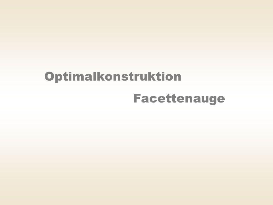 Optimalkonstruktion Facettenauge
