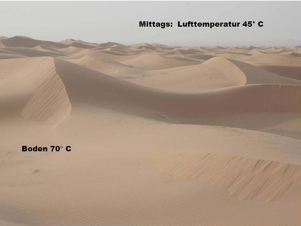 Mittags: Lufttemperatur 45° C Boden 70° C