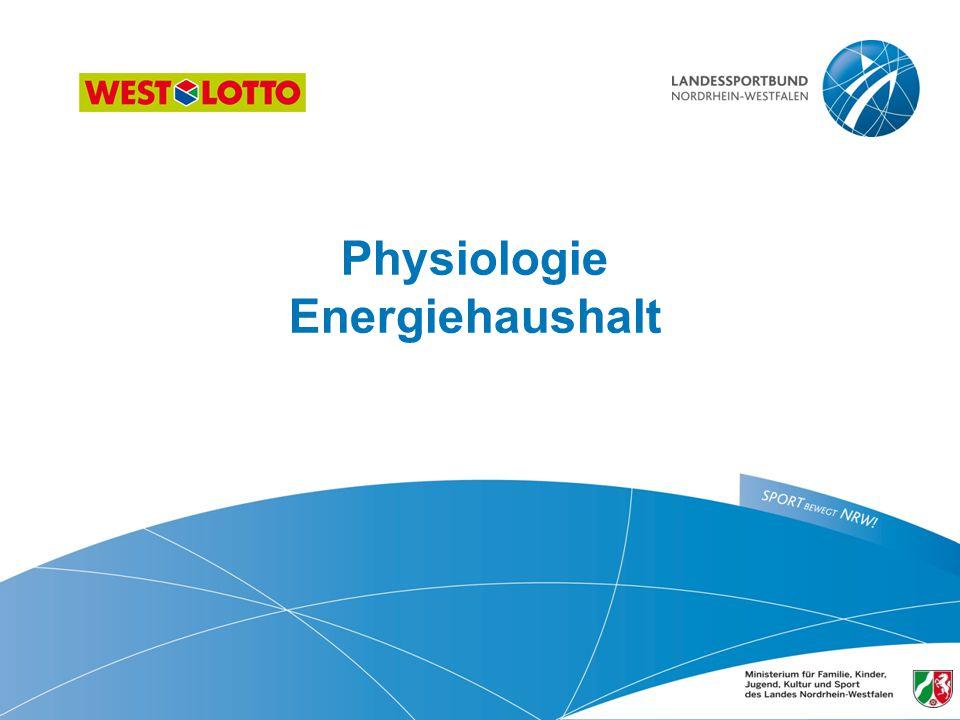 Physiologie Energiehaushalt 