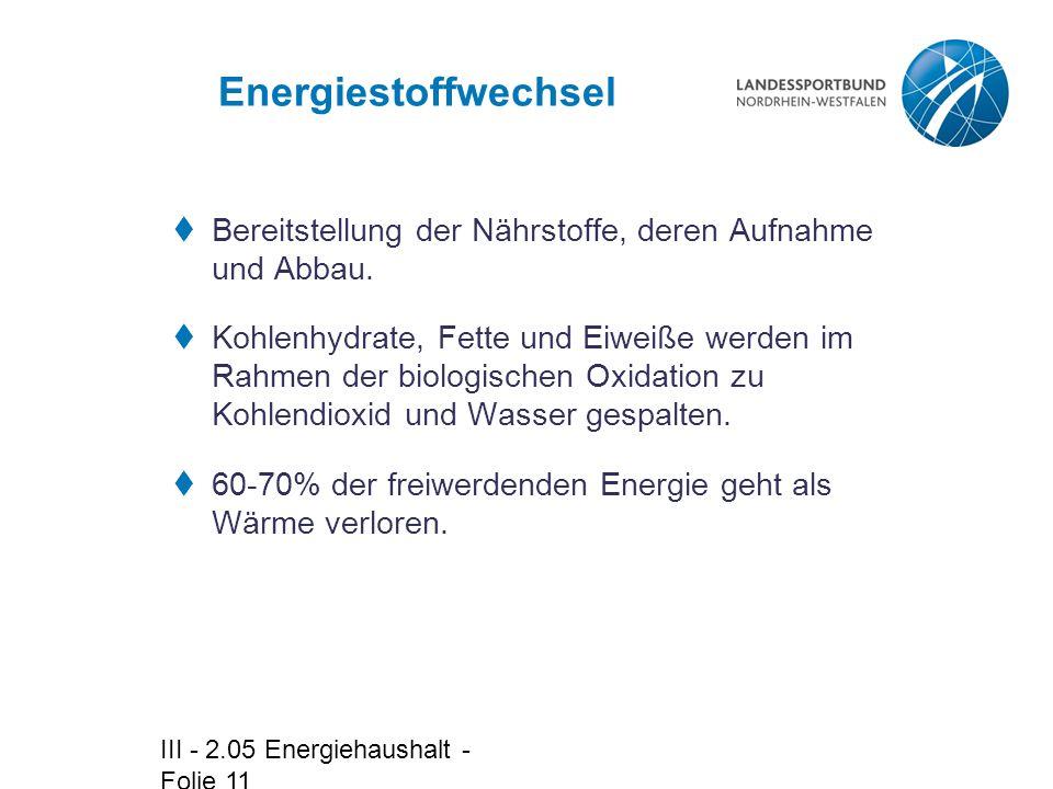 III - 2.05 Energiehaushalt - Folie 11 Energiestoffwechsel  Bereitstellung der Nährstoffe, deren Aufnahme und Abbau.