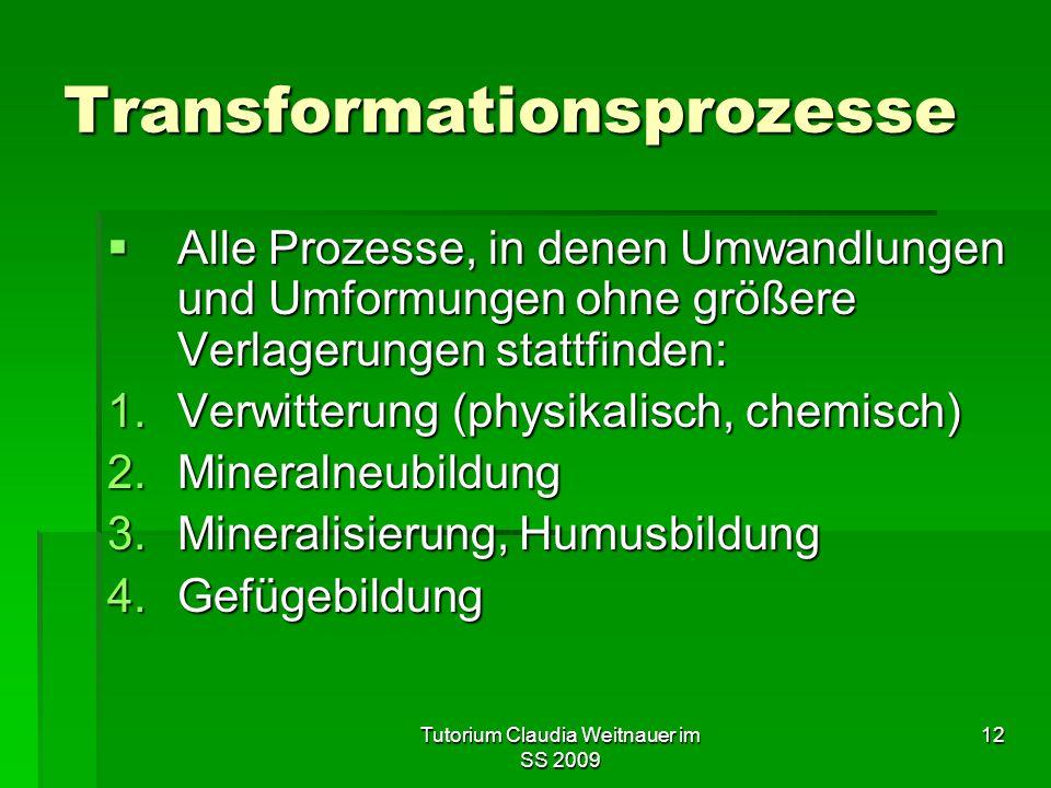 Tutorium Claudia Weitnauer im SS 2009 12 Transformationsprozesse  Alle Prozesse, in denen Umwandlungen und Umformungen ohne größere Verlagerungen sta