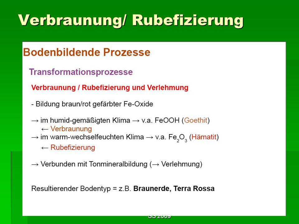 Tutorium Claudia Weitnauer im SS 2009 13 Verbraunung/ Rubefizierung