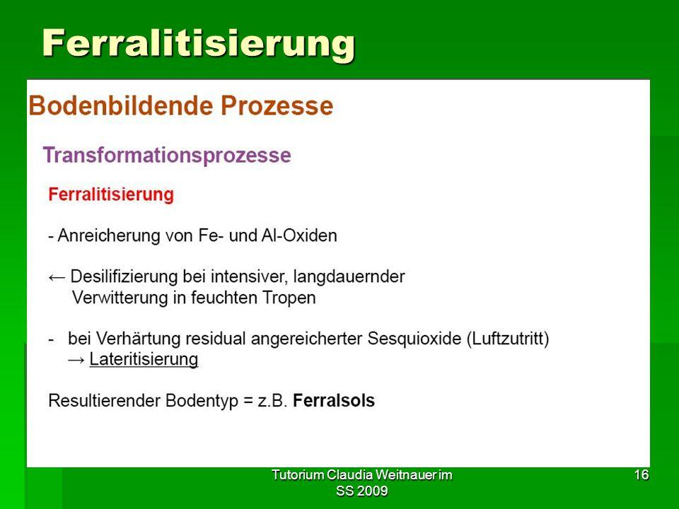 Tutorium Claudia Weitnauer im SS 2009 16 Ferralitisierung