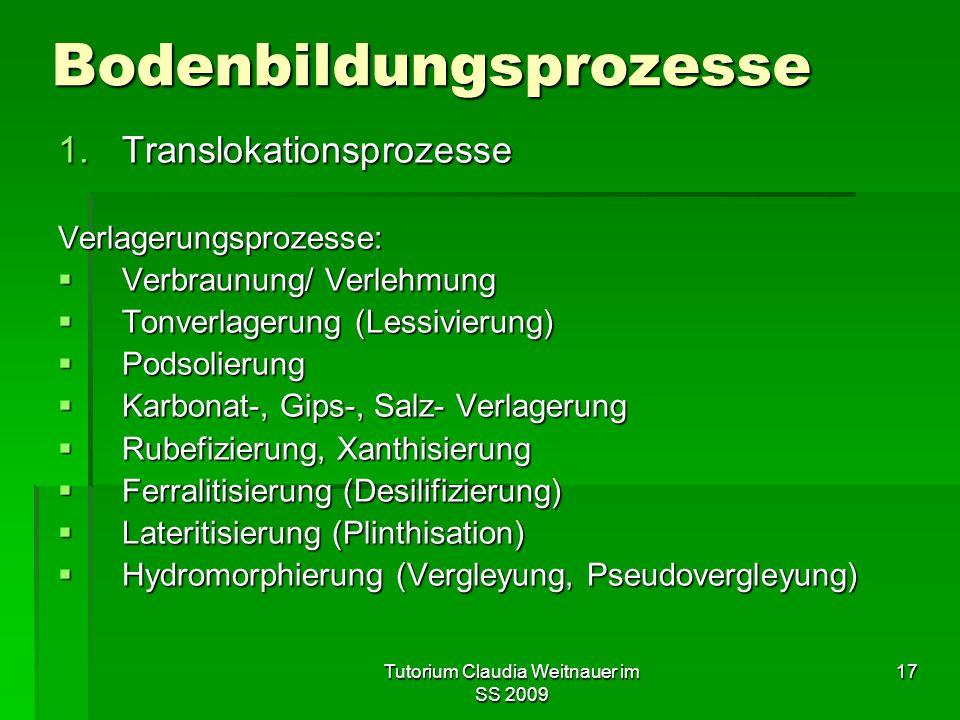 Tutorium Claudia Weitnauer im SS 2009 17 Bodenbildungsprozesse 1.Translokationsprozesse Verlagerungsprozesse:  Verbraunung/ Verlehmung  Tonverlageru