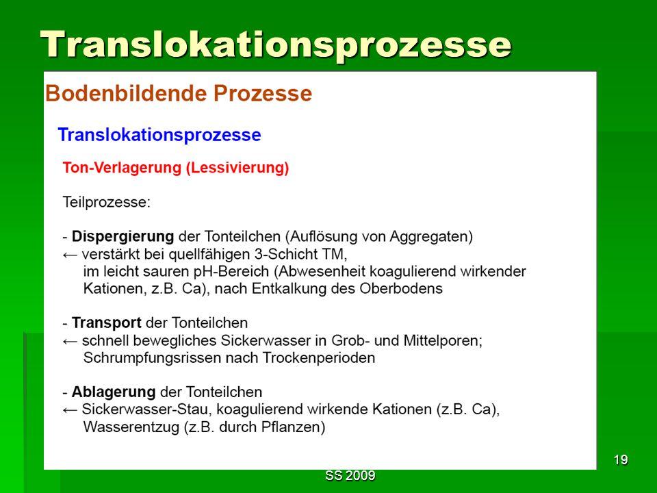 Tutorium Claudia Weitnauer im SS 2009 19 Translokationsprozesse